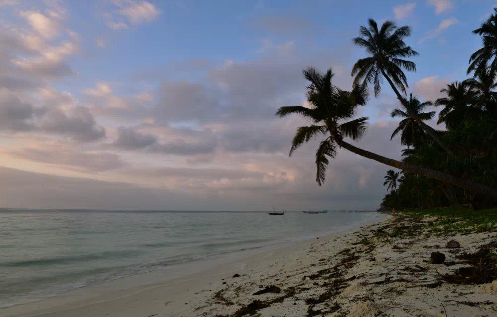 阳光海滩-老韩作品